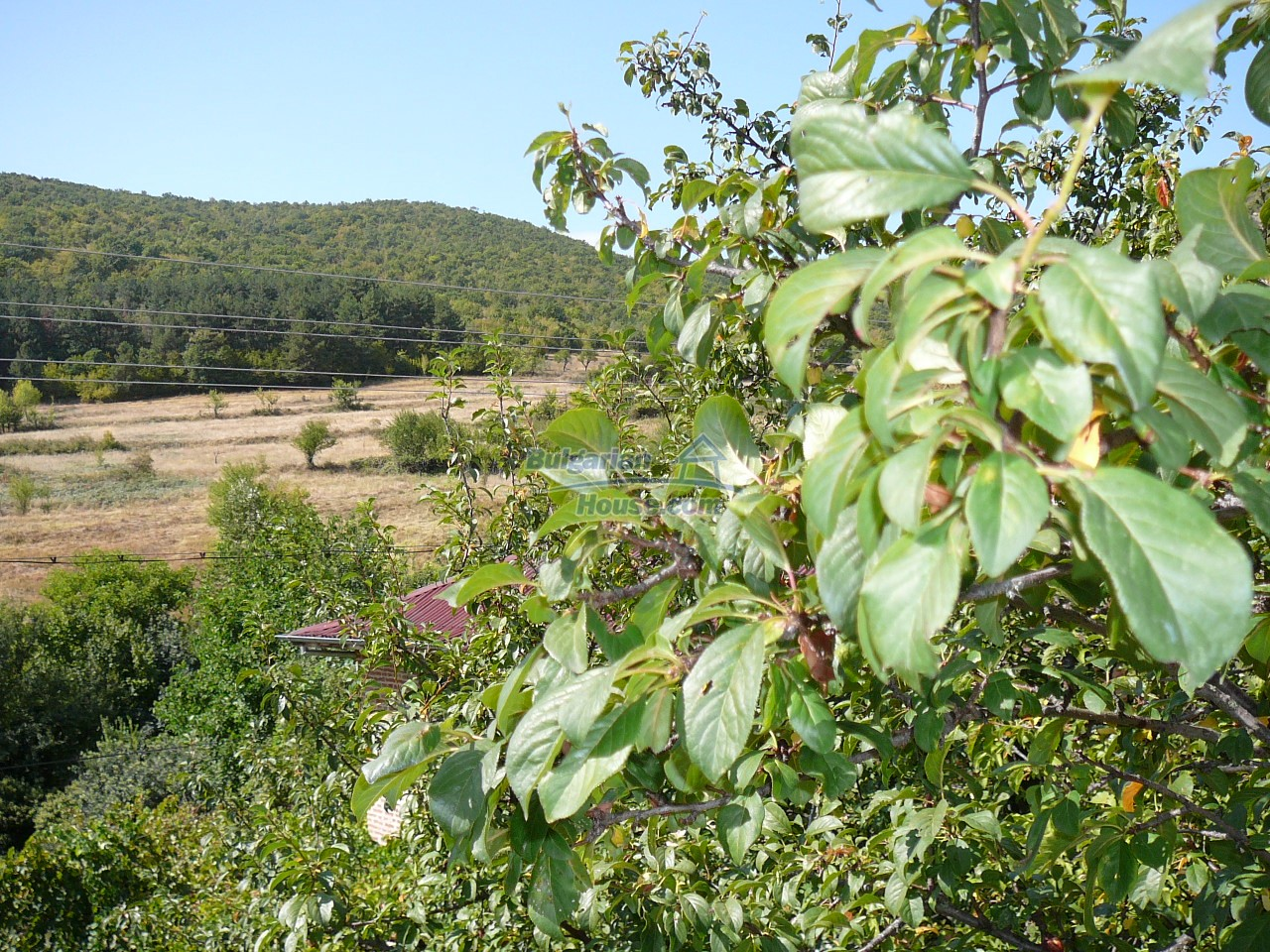 12533:11 - Bulgarian house -beautiful views, surroundings-50km to Plovdiv