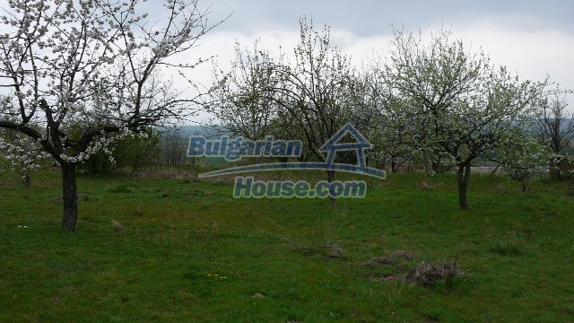10983:8 -  Bulgarian house very close to pine forest and Kazanlak