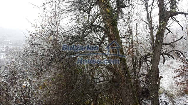 12443:41 - Traditional Bulgarian property for sale in Lovech region
