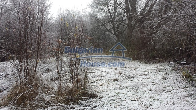 12443:17 - Traditional Bulgarian property for sale in Lovech region