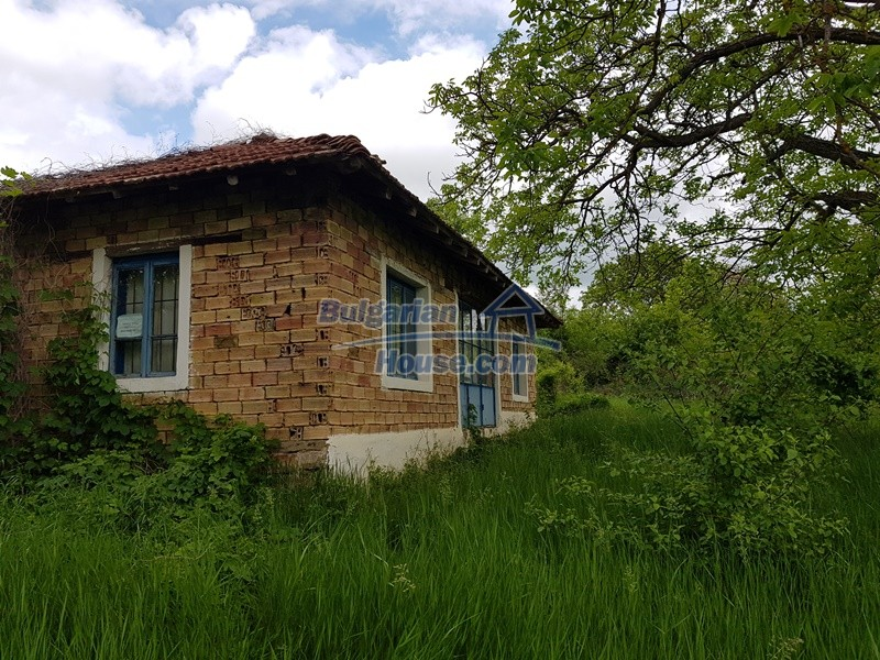 12849:12 - Two houses, big out building and a garden for sale Targovishte