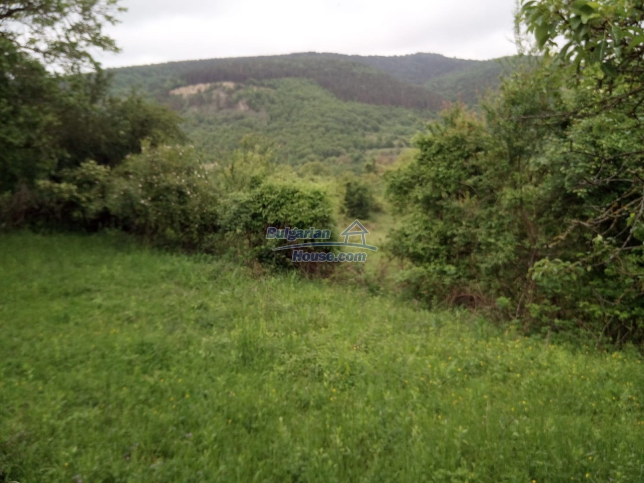 12851:77 - MARVELLOUS VIEWS, garden 8000 sq.m, two houses, farm buildings