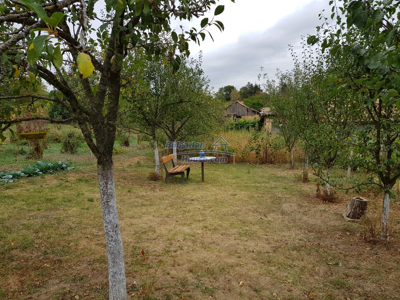 12962:14 - TWO HOUSES, big workshop, many outbuildings and 5000sq.m garden