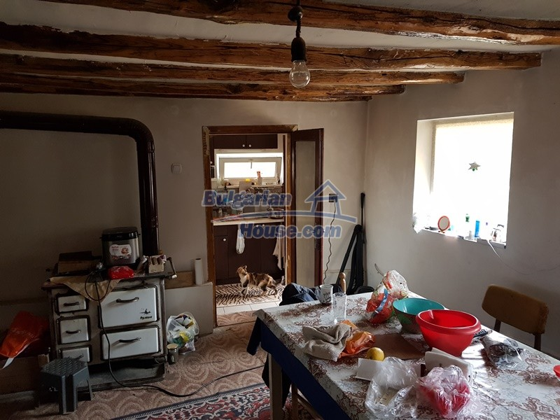12962:20 - TWO HOUSES, big workshop, many outbuildings and 5000sq.m garden