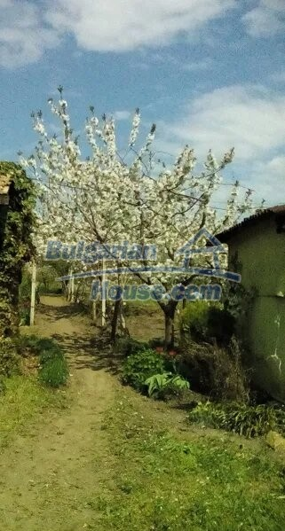13065:5 - Very cheap Bulgarian house in northeastern Bulgaria