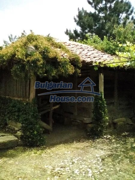 13065:2 - Very cheap Bulgarian house in northeastern Bulgaria