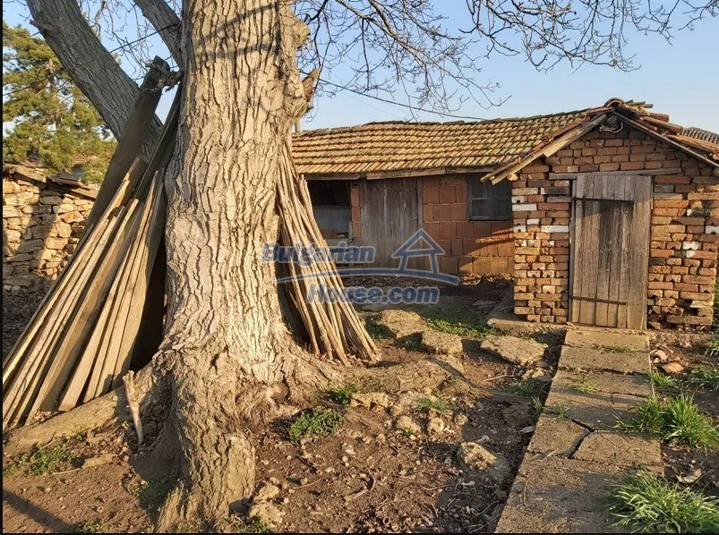 13154:28 -  Bulgarian house 24 km from the sea with 3500sq.m garden Kavarna