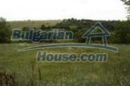 Lands for sale near Galabovo - 593
