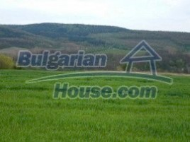 Lands for sale near Gabrovo - 932