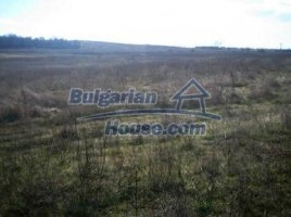 Lands for sale near Haskovo - 4742