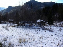 Lands for sale near Smolyan - 7137