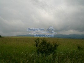 Lands for sale near Elena - 8889