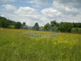 Lands for sale near Elena - 8913
